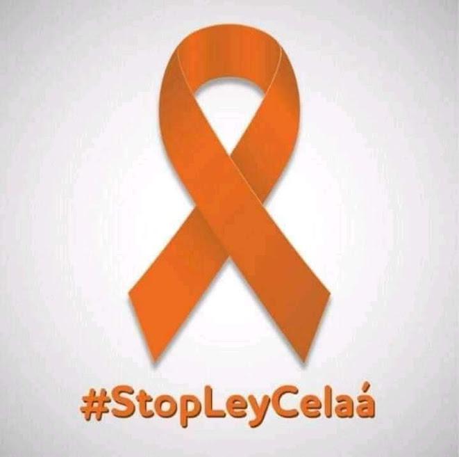stop ley Celaa